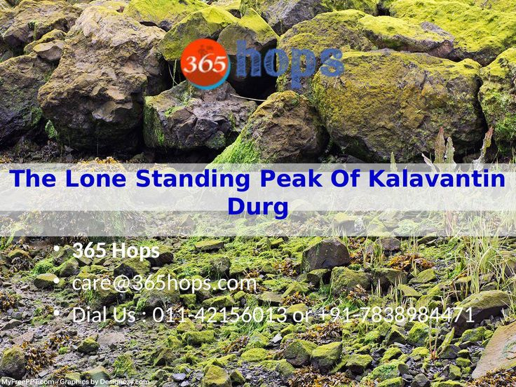 The Lone Standing Peak Of Kalavantin Durg  >>>  Kalavantin Durg, little did I know about this #pinnacle. We were supposed to go to #KalavantinDurg, the other being Prabal Gad from where you can see the magical Kalavantin Durg. #Prabalmachi opens to a beautiful #valley from where winds flow so strongly that you can't even stand properly.   #Treks #trekking