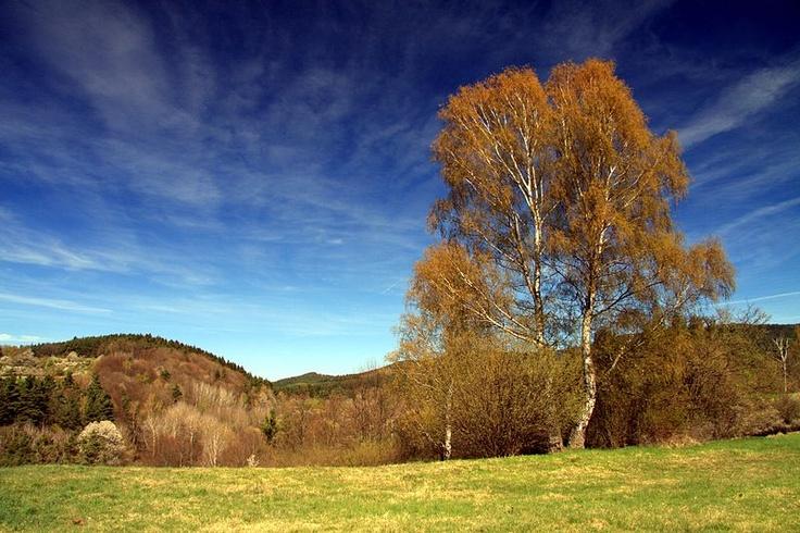 National nature reserve Vyšenské kopce in Český Krumlov District, Czech Republic