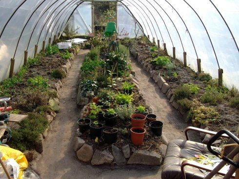 This is the latest idea I have put to the test and it works…a beaten earth floor in the polytunnel, that can be swept and kept clear of weeds without any covering!    It has been dug out to the subsoil and the waste piled onto the beds to raise them even further.    The beaten floor also acts as a heat conductor to the earth under the beds.