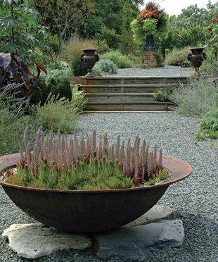 container garden from Fine Gardening