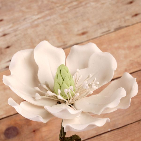 Edible Full Bloomed White Magnolia gumpaste sugarflower cake decorations perfect for wedding cakes decorating rolled fondant cupcakes.   www.CaljavaOnline.com #caljava #sugarflower #magnolia