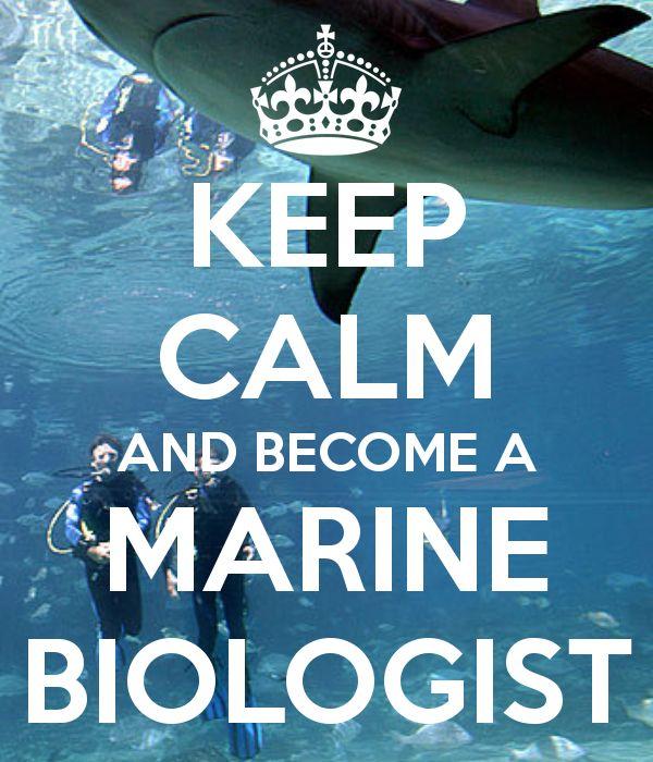 I NEED to become a marine biologist!  http://marinecarecenter.com/
