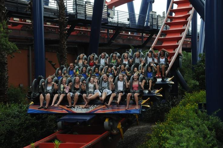 Roller Coaster Sheikra in Bush Gardens, Orlando, Florida, US
