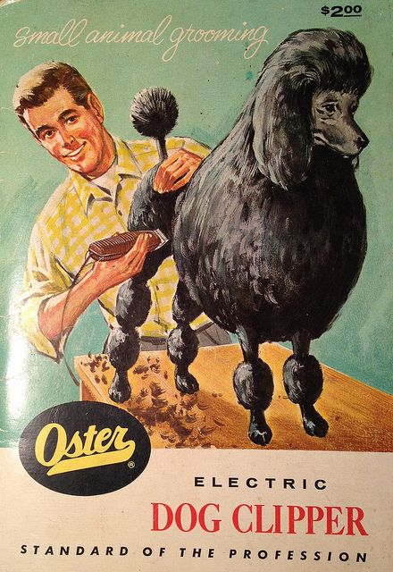 Vintage Oster Electrc Dog Clipper grooming guide. This would make a great cover for a novel. Someone should write a novel just so they can use it.