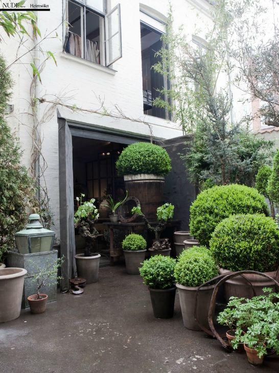 nice corner !!