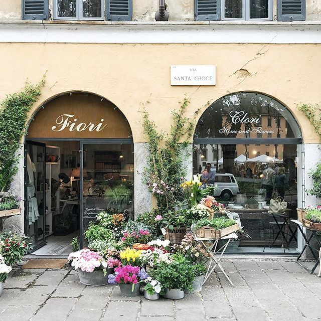 I've been going from flower to shop to flower shop lately #prettymilano #flowers #