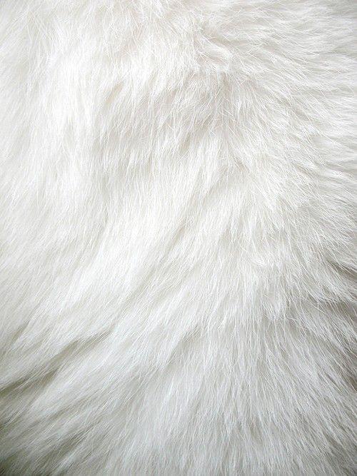 White Fur Rug Fun Fur Pinterest