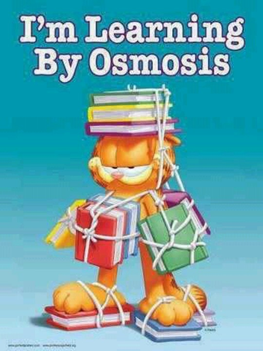 How to use osmosis in a sentence - WordHippo