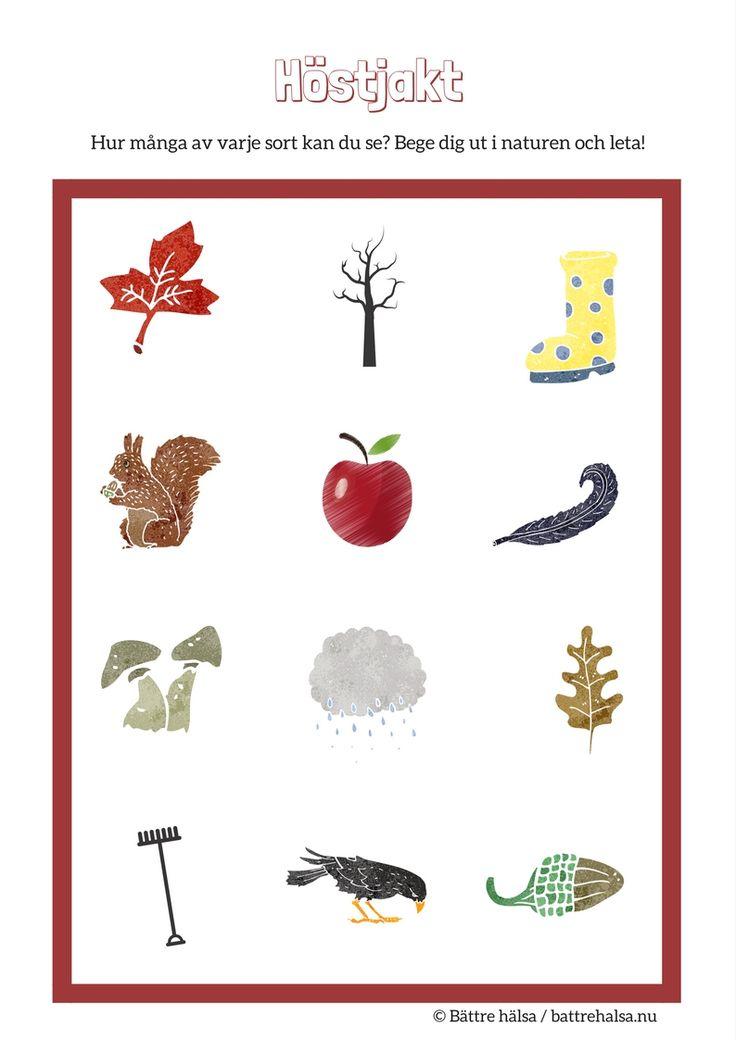 Aktiviteter för barn och vuxna. Här finns om hösten, hösttecken, känna igen höst tecken, barnaktiviteter m m. Inomhus och utomhus. Rörelselekar och annat.