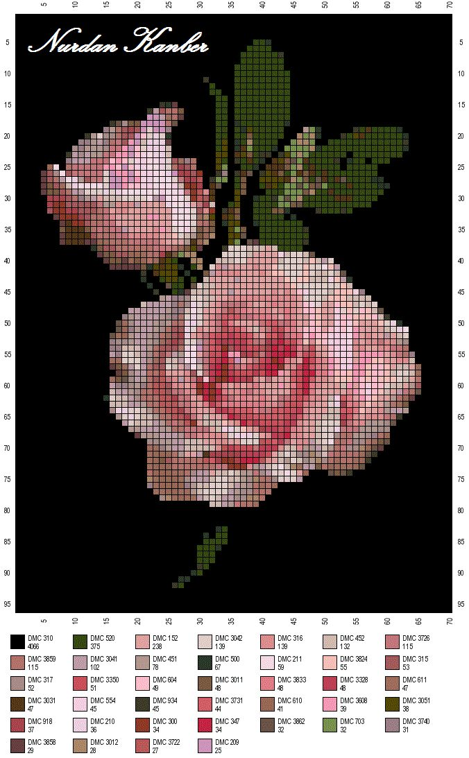 Cross-stitch Roses - in front of the dark background!