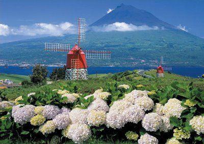 Island of Faial #Azores #Portugal