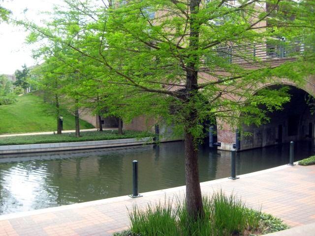 Woodlands Waterway, Houston, Texas: Review, Photos plus Hotels Near Woodlands Waterway - VirtualTourist