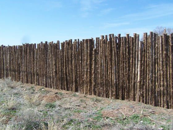 """Coyote fence"" - New Mexico style palisade fence made of skinny logs"