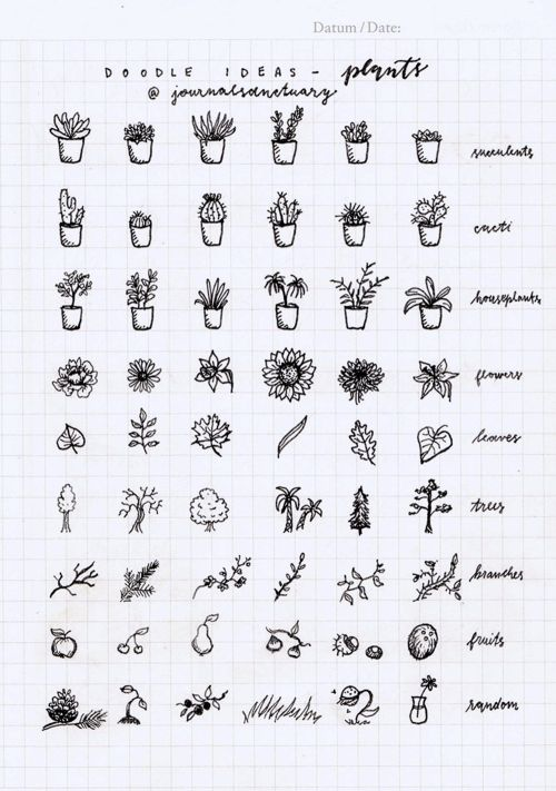 "journalsanctuary: ""Doodle ideas 1 - plants Remember when I asked you what should I do with the remaining pages of my bujo? Well, the most suggested thing was to do some doodle ideas, which I did, yaay :D. Now I know a lot of people have done these,..."