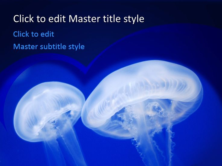 Free Jellyfish PPT Template to Share intriguing Jellyfish facts #science #fish #jellyfish #food #aqua
