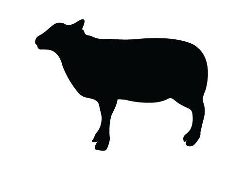 Sheep Silhouette Vector Free Download Silhouette Clip