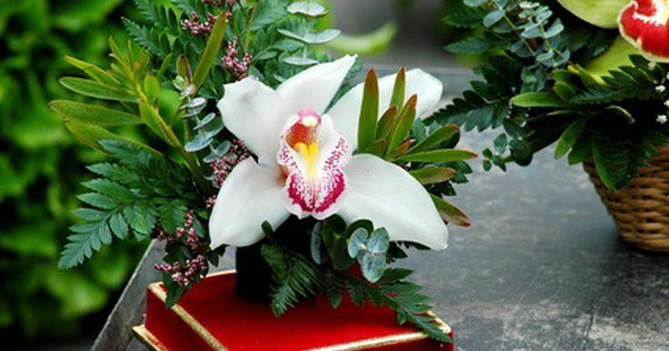 Tipos de flores asiáticas. O tipo mais conhecido e reconhecido de flor asiática é provavelmente a orquídea. Muitas outras variações de flores dessa região não são tão conhecidas, mas são igualmente atrativas e fascinantes. Além disso, mais variedades da família das orquídeas foram criadas por hibridização.