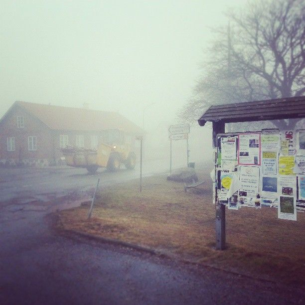 Fogg in Skillinge, Österlen