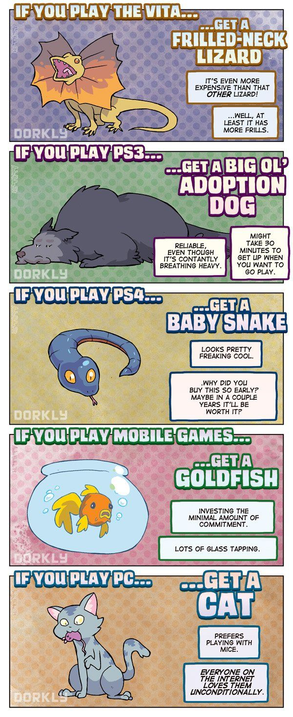 """The Perfect Pet For Every Gamer"" (part 2/2) #dorkly #geek #gamers"