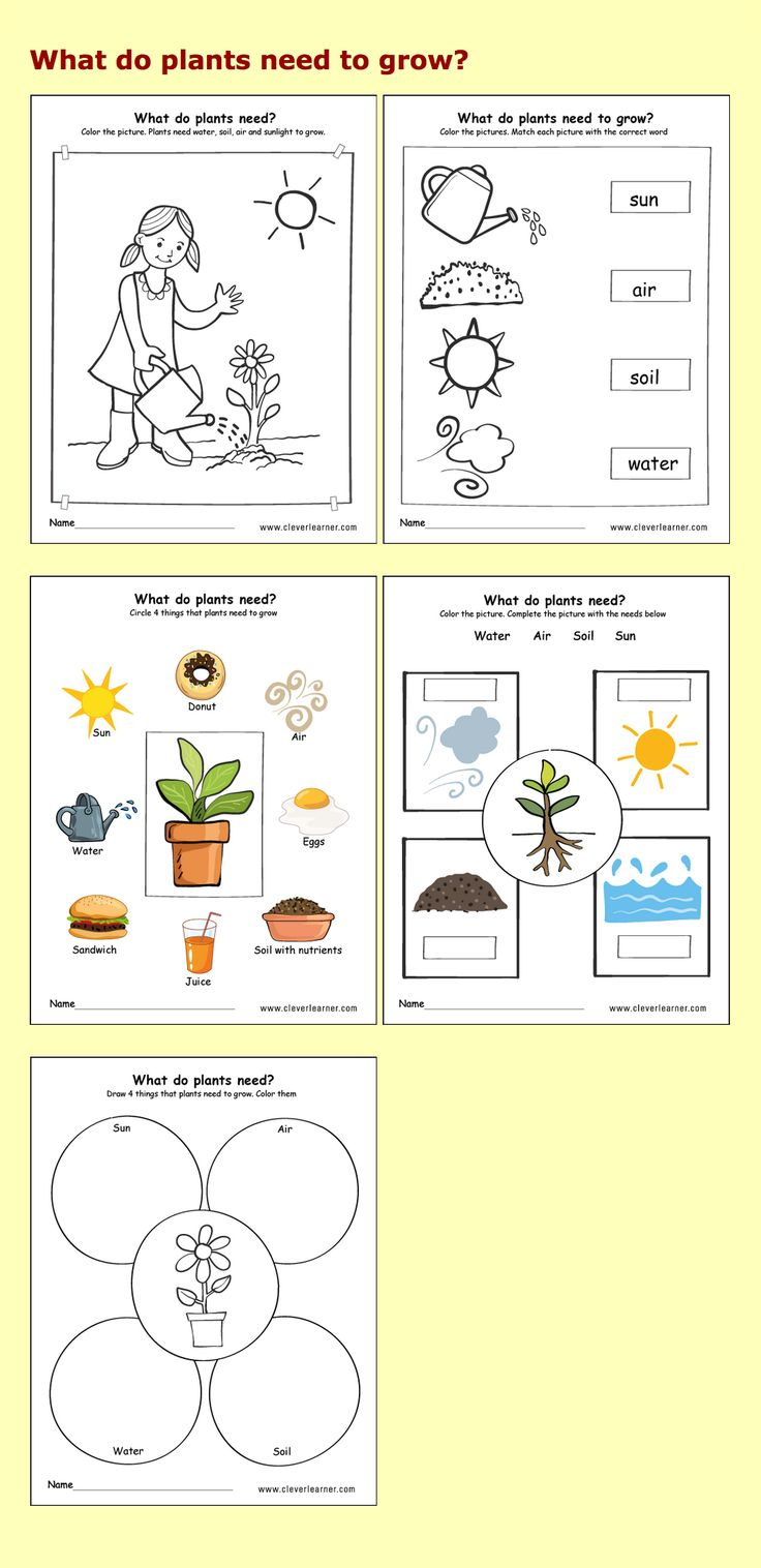 4th grade science worksheets soil