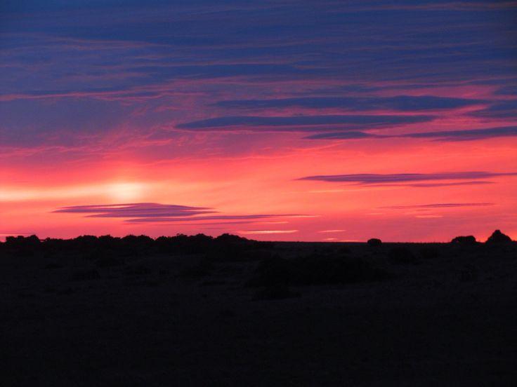 Amazing sunset on the Amakhala Game Reserve {Photographed by: Ranger Justin Tyler} #sunset #amakhala #safari