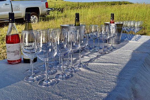 Как понять язык сомелье и сойти за умного на дегустации вина - Туризм