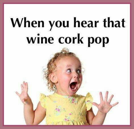 When you hear that wine cork pop.... #winehumor #winelove