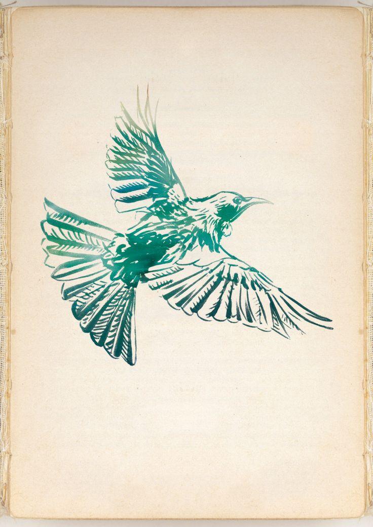 Green Tui Bird Print by IlluminatedLetters on Etsy