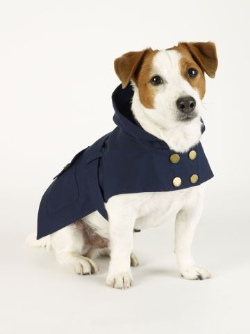 Dog Raincoat - Ralph Lauren Home For the Pet - RalphLauren.com