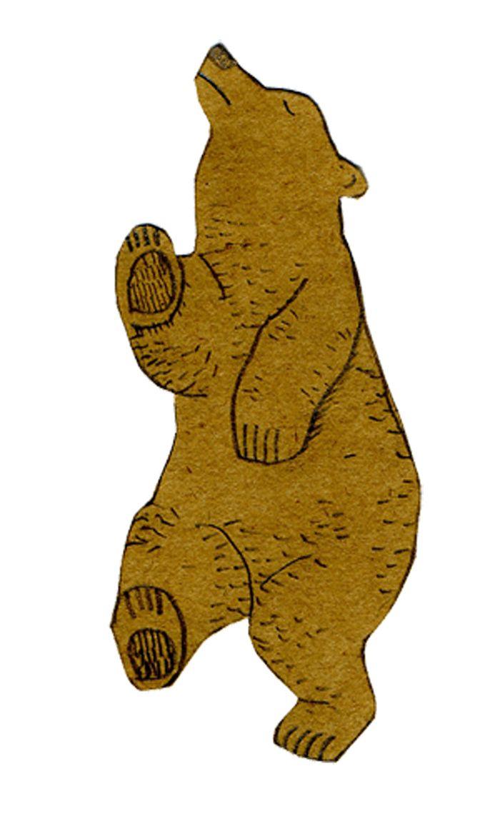 Днем, медведи картинки анимашки