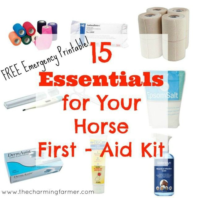 15 Essentials for Your Horse First Aid Kit & Free Emergency Printable »