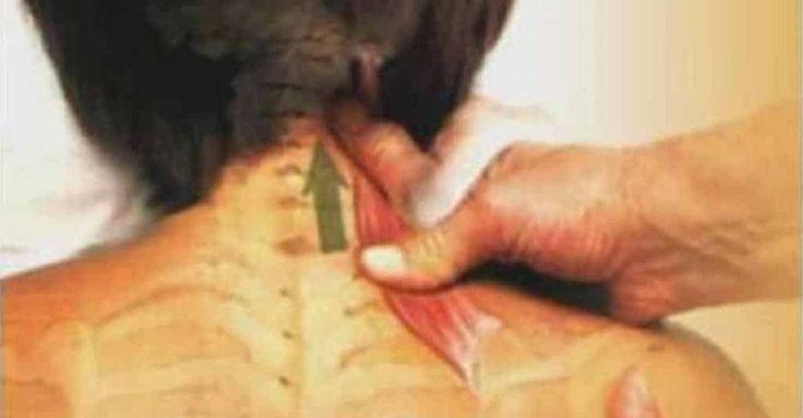 Cada vez mais as pessoas estão mais sedentárias e a falta de movimento, juntamente com a falta de uma postura certa vão danificar as articulações, provocando dor. Confira aqui algumas formas de eliminar essas dores, especialmente a dor de coluna: Descansar bem; Deixar de fumar; Tomar magnésio;…