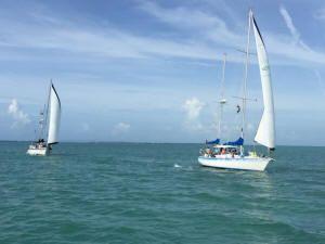 Florida Sailing Charter   Three Quarter Day sailing cruise in Tampa   Florida Sailboat Charter   Island sail Cruise   Sail Trip Tampa Bay   Sailing Clearwater Beach