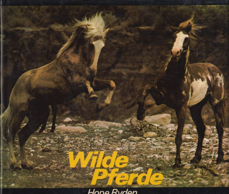 Wilde Pferde von Hope Ryden Pferdebuch Wilde Tiere eBay