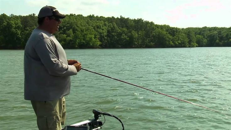 Fishing Spinnerbaits Deep for Bass