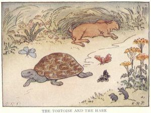 Moral story on Slow and Steady wins the race, 100 words story for children of class 1, 2, 3, 4 and also for students