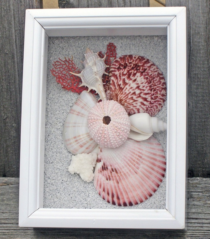 pink shell shadowbox