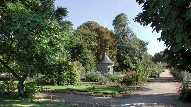 54 best images about hnl mus um jardin des plantes on for Restaurant jardin des plantes paris