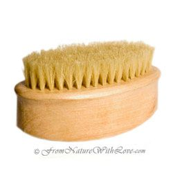 Body brush- It does not have to be this exact one.