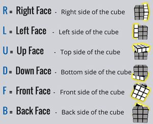 How To Solve A Rubik's Cube - Stage 1 | Rubik's Official Website