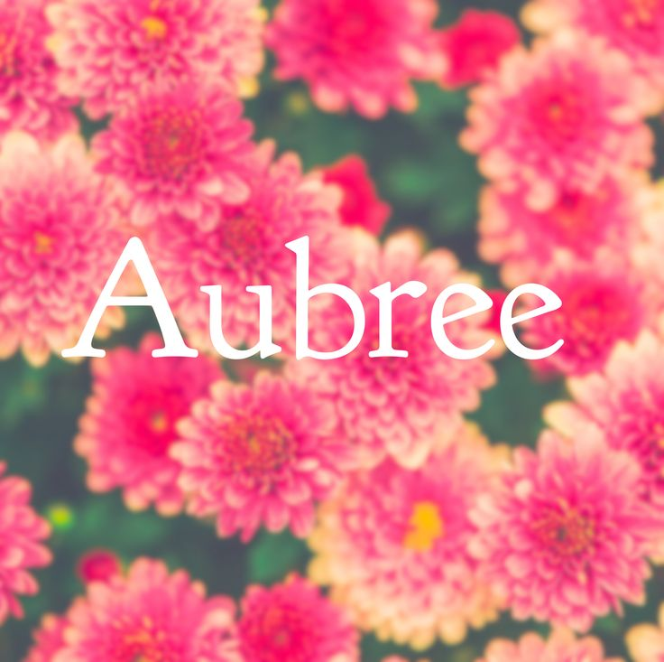 Aubree meaning noble ruler and nickname Bree