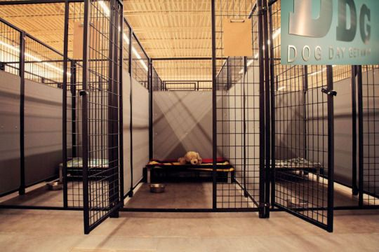 If you have a dog and want to take up a vacation with your family members, you must leave your dog at a genuine dog boarding facility. Your best friend will be given care in the right manner and made to interact with other pets at the center.  #DogBoardingLakevilleMN #BloomingtonDogBoarding #DogBoardingEaganMN #DogBoardingBurnsvilleMN #DogTrainingStPaulMN #DogBoardingBloomington     http://yourdogdaycare.tumblr.com/post/115881320566/should-you-leave-your-dog-at-a-bloomington-dog