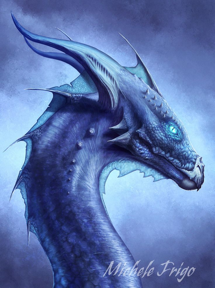 dragons | Blue Dragon - Dragons Photo (33275599) - Fanpop fanclubs