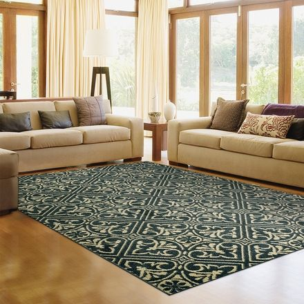 costco rug 60usd