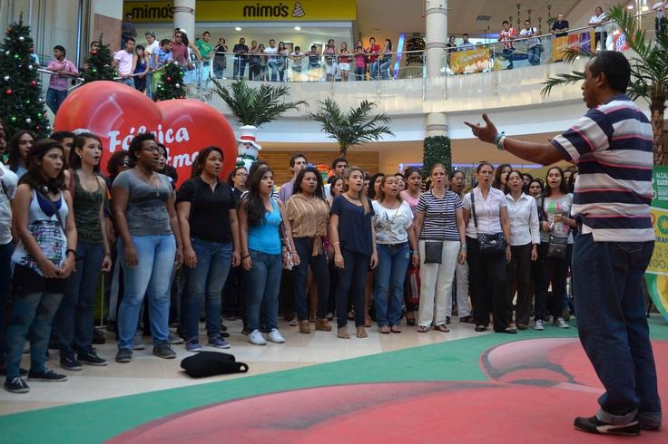 Circuito coral. Celebra la Música - Barranquilla. Crédito Secretaría de Cultura de Barranquilla.