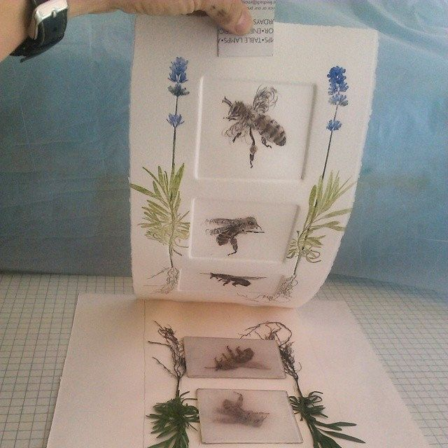 We three #bees love lavender. Will the plants survive for more prints? #printmaking
