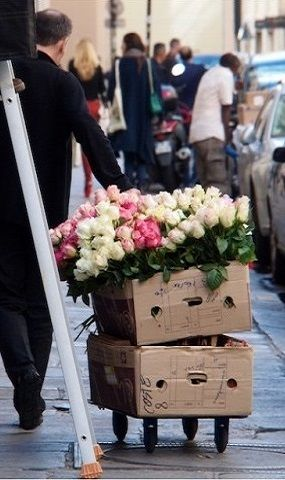 Delivery of roses for the Costes hotel, rue St Honoré, Paris