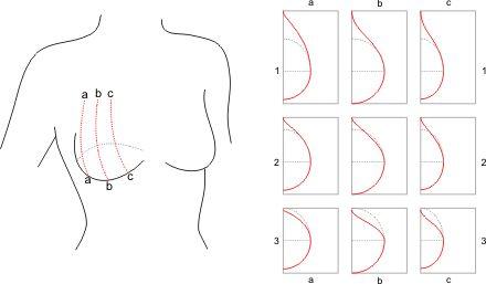 Bra Cup Pattern Tutorial « Pattern School