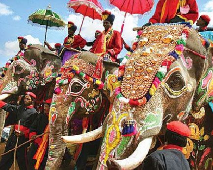 """Asian elephants in full panopy: For many centuries wild Asian elephants have been captured and """"tamed"""" to be used in war, as status symbols for rulers, and in industries where lifting and moving of heavy objects is required. Except for pageantry, most of the functions elephants performed are now done by machines. There is concern about their future."""