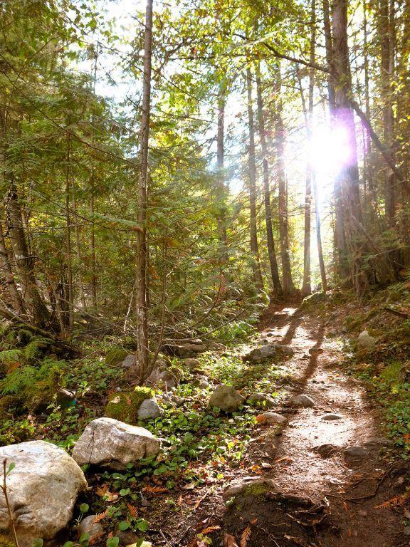 4.5-12.5 hikes/trail runs around the Okanagan.